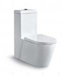 One-Piece Toilet Bowl